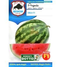 BISON SEMI DI ANGURIA OBLA IBRIDO F1