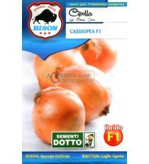 BISON SEMI DI CIPOLLA CASSIOPEA IBRIDO F1