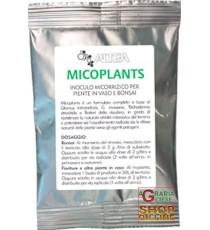 ALTEA MICOPLANTS  INOCULO MICORRIZICO PER PIANTE IN VASO E BONSAI  50 g
