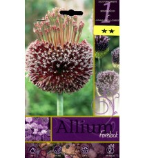 BULBI DI FIORE ALLIUM FORELOCK N. 1