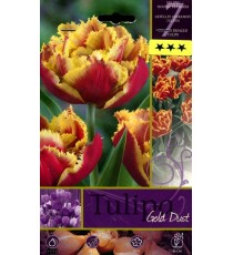 BULBI DI FIORE TULIPA GOLD DUST N. 7