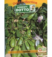 DOTTO SEMI DI CAPPERO