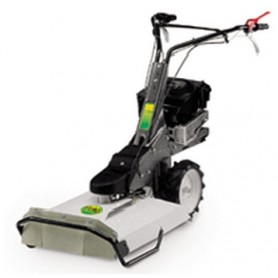 ALPINA LAWN MOWER BRIGGS STRATTON QUANTUM HP. 5 GRASS CM. 53
