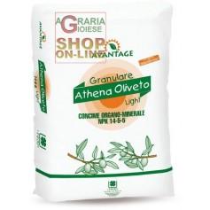 ATHENA OLIVETO LIGHT CONCIME CONCIME ORGANO MINERALE NPK 15.5.5