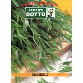 DOTTO BUSTE SEMI DI DRAGONGELLO
