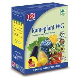 RAMEPLANT WG FUNGICIDA OSSICLORURO DI RAME KG. 1