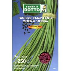 SEMI DI FAGIOLO METRO STRINGA RAMPICANTE GR. 250
