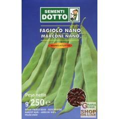 SEMI DI FAGIOLO NANO MARCONI SEME NERO GR. 250