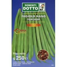 SEMI DI FAGIOLO NANO TOP CROP GR. 250
