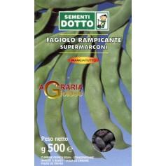 SEMI DI FAGIOLO RAMPICANTE SUPER MARCONI SEME NERO GR. 500