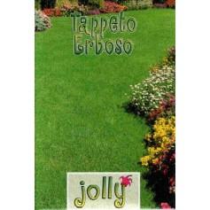 SEMI DI PRATO INGLESE PRATO JOLLY KG. 25