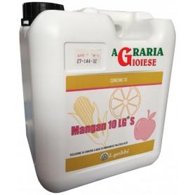 GOBBI MANGAN 10 LG S CONCIME BIOLOGICO A BASE DI MANGANESE KG. 1