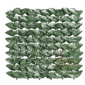 ARELLE EVERGREEN LAUREL BOTTON MT. 1 x 3