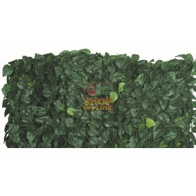ARELLE HEDGE EVERGREEN LAUREL DOUBLE SHIELD MT. 1X3