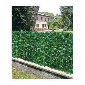 ARELLE HEDGE EVERGREEN LAUREL MT. 1 X 3