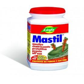 LINFA MASTIL MASTICE PER INNESTO CICATRIZZANTE PROTETTIVO GR. 300